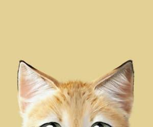 kawaii, wallpaper, and animal image