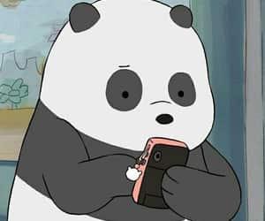 panda, bear, and we bare bears image