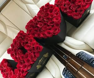 rose, flowers, and love image