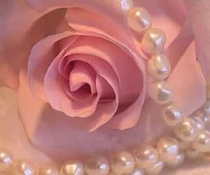 rose, flower, and pearls image