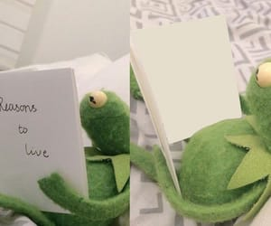 kermit, meme, and frog image