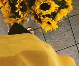 amarillo, beautiful, and bouquet image