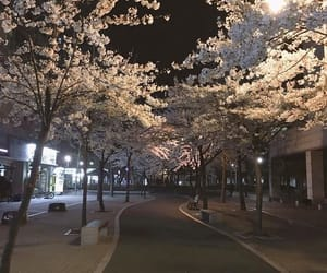 japan, aesthetic, and beautiful image