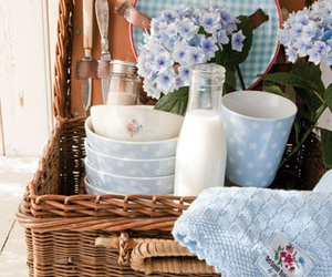 picnic, blue, and milk image