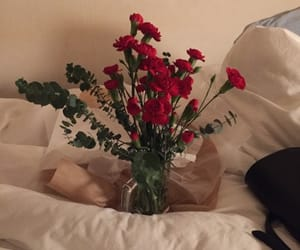 flowers, pretty, and red image