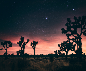 aesthetic, desert, and landscape image