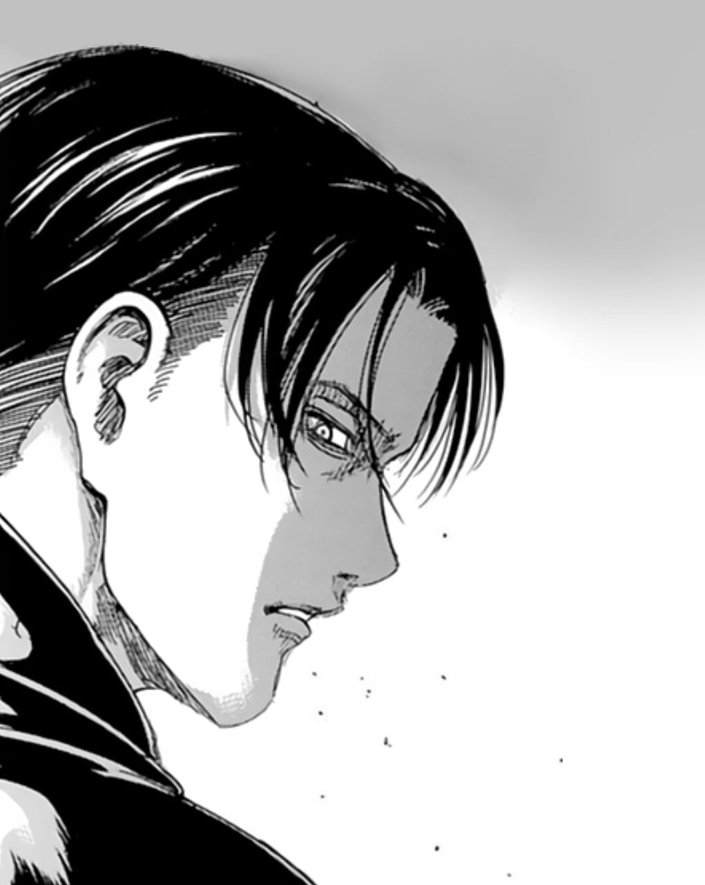 Image About Hair In Shingeki No Kyojin By Á¹iŧuaŀ