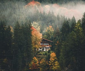 nature, amazing, and fall image