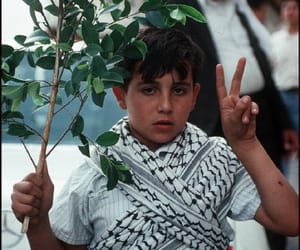 palestine and عربي image