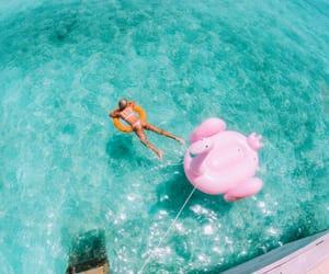beach, flamingo, and swim image