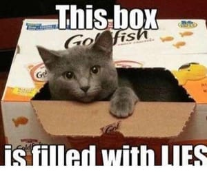 box, boxes, and cat image