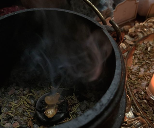 cauldron, herbs, and home image