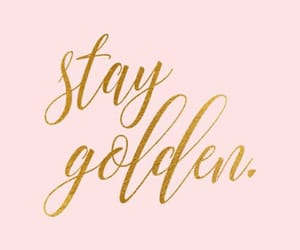 gold, quotes, and pink image