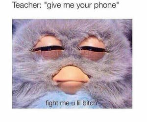funny, lol, and teacher image