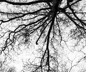 alone, beautiful, and black image