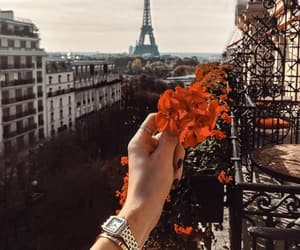 flowers and paris image