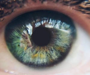 amazing, beautiful, and eye image