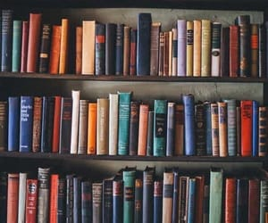 book, read, and bookshelf image