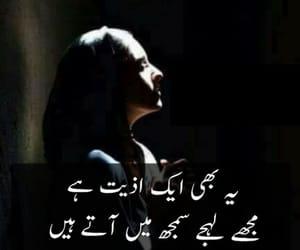 pakistani, shayari, and urdu image