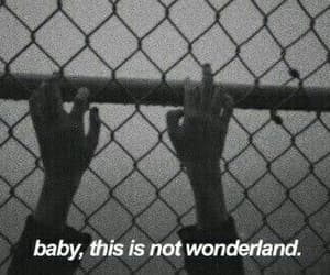 baby, grunge, and wonderland image