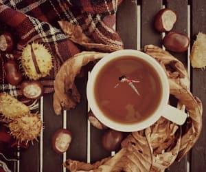 autunno, girl, and caldo image