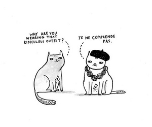 cat, french, and funny image