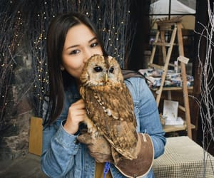 animals, edinburgh, and kiss image