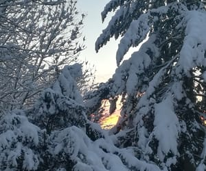 snow, sunset glow, and winter morning image