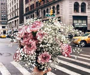 flowers, city, and pink image
