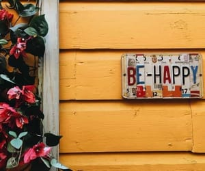 happy, yellow, and flowers image