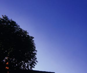 blue sky, casual, and nature image