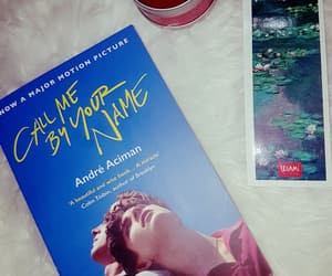 book, monet, and romance image