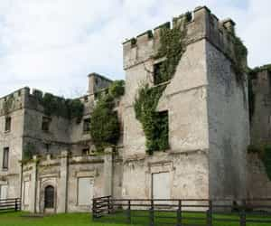 castle, ireland, and dublin image