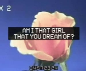gif, indie, and aesthetic image
