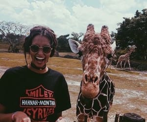 giraffe, girl, and animal image