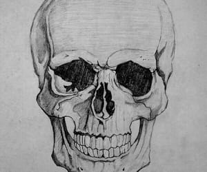 skull, drawing, and draw image