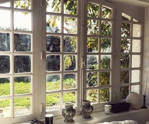 garden, light, and interior image