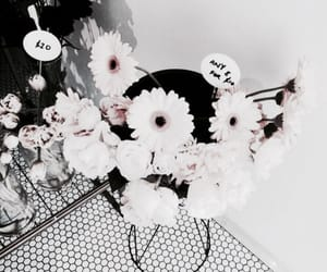 flowers, tumblr, and white image