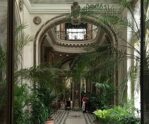 luxury and plants image