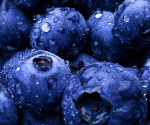 blueberry, fruit, and wallpaper image