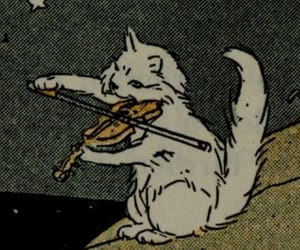 cat, violin, and white image
