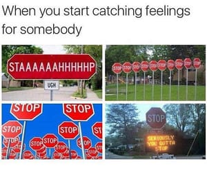 feelings, funny, and true image
