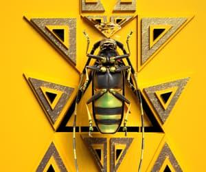 digital art, gif, and yellow image