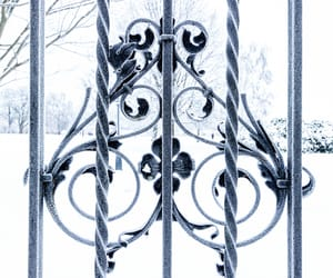frost, gate, and outdoor image