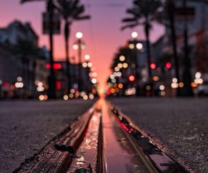 city, lights, and palm tree image