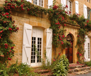 flowers, house, and roses image