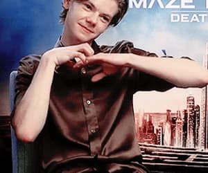 gif, thomas brodie-sangster, and actor image