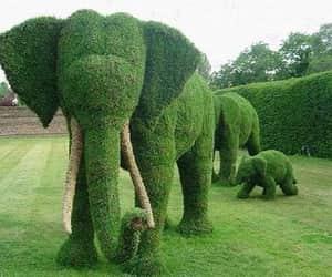 design, garden, and art image