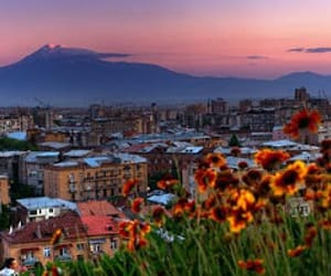 armenia, flowers, and ararat image