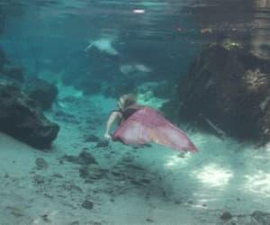 mermaid, gif, and sea image